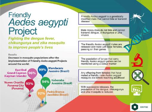 Oxitec infographic
