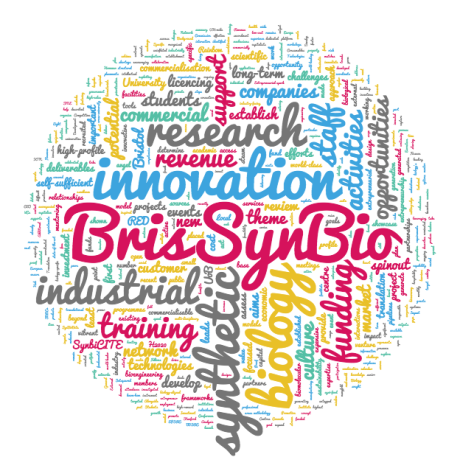 bsb-wordcloud